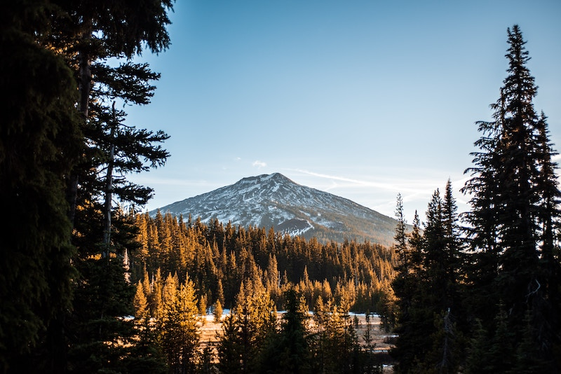 Bend Oregon | Online Therapy | Living Life's Journey Counseling